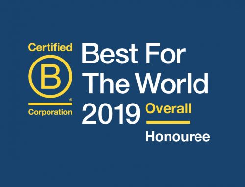 Tribe honoured as Best for the World 2019