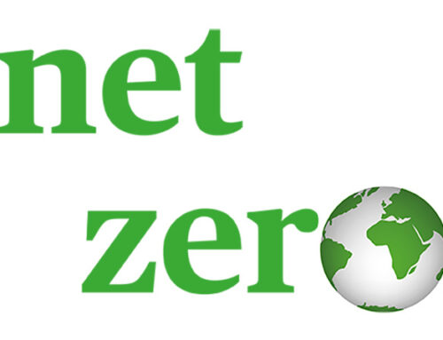 Our path to net zero