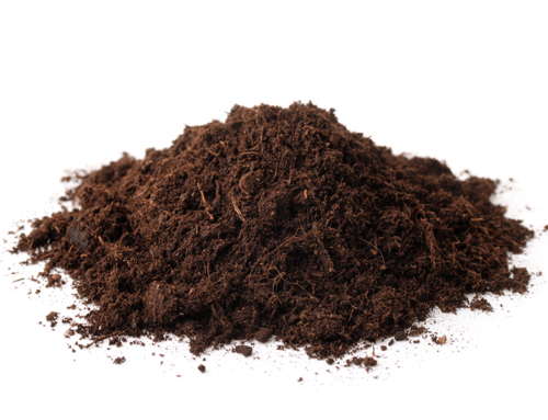 How many living things are there in one teaspoon of soil?